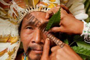 close up of an Indain recieving a treatment with Sananga eyedrops, Tabernaentana Sahanho
